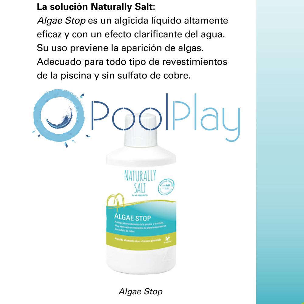 Desde PoolPlay te aconsejamos los mejores productos para eliminar las algas de la piscina